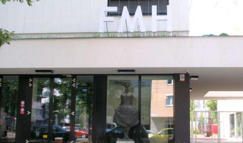 FMH (Temi Főváros Művelődési Háza) Budapest